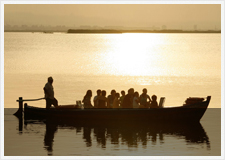 Guided tours market garden and Albufera Natural park
